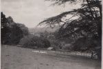 Broomhill  Nr Tiverton Devon 1924 - 1935.